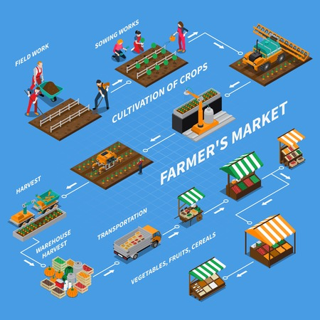 Local market isometric flowchart composition with isolated images representing different stages of vegetable production and sales vector illustration