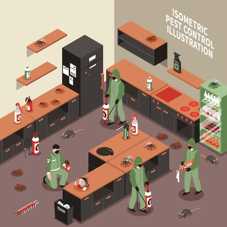 Pest control scene with workers in uniform with equipment insects and rodents kitchen interior isometric vector illustration
