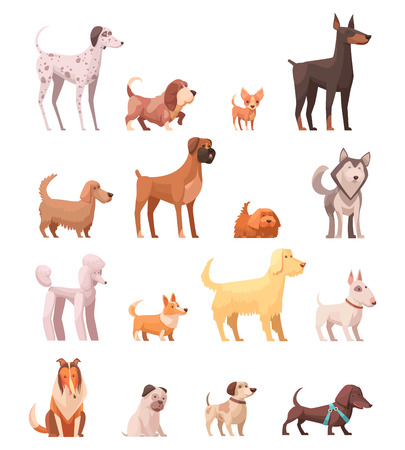 Dog breeds retro cartoon icons collection with husky poedel collie shepherd and dachshund dog isolated vector illustration  Vectores
