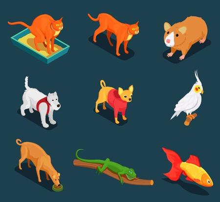 애완 동물 상점 기니 돼지와 함께 설정하는 다채로운 아이소 메트릭 아이콘 고양이 개 도마뱀 어두운 배경 벡터 일러스트 레이 션