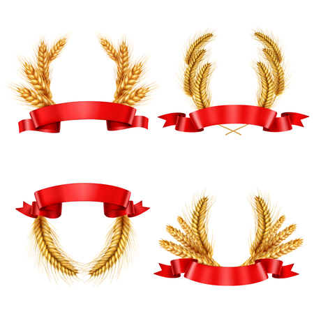 Set of realistic spikelet wreaths from wheat and barley with red glossy ribbons isolated vector illustration