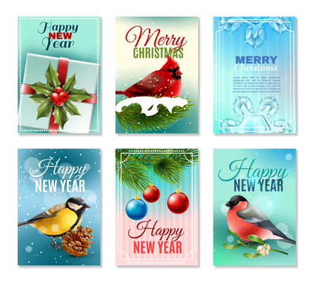 Set of christmas winter cards with birds, fir branches and berries, holiday decorations, snow isolated vector illustration