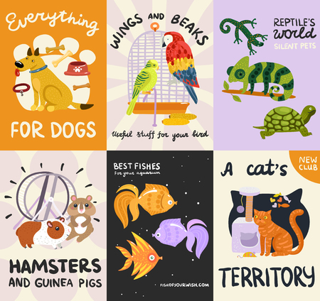 Pets posters and banners set with reptiles, fishes, stuffs for dog, cat, birds, rodents isolated vector illustration 向量圖像