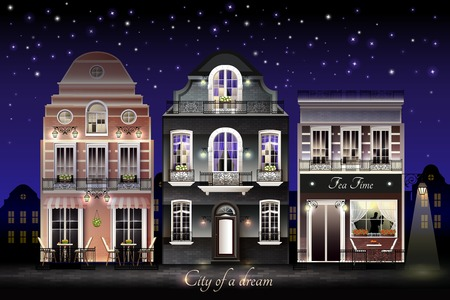 Old european illuminated facade of houses with flowers at balconies on background of starry sky vector illustration