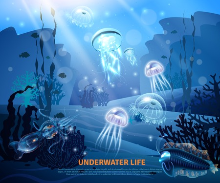 Underwater world sea life poster with transparent colorful jellyfishes, coral reef, sun rays in misty blue background vector illustration