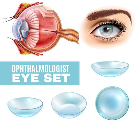 側面図でコンタクトレンズと人間の目の解剖学の眼科リアルなセット。  イラスト・ベクター素材
