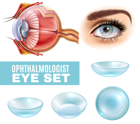 Ophthalmology realistic set of contact lens and human eye anatomy in side view illustration. Stock Illustratie