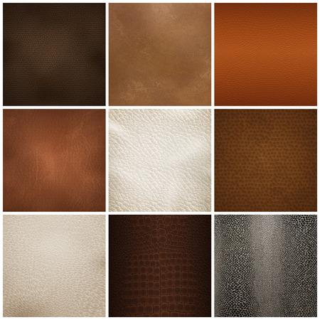 Conjunto de muestras de texturas de cuero de moda para tapicería de muebles y decoraciones de interiores. Ilustración de vector