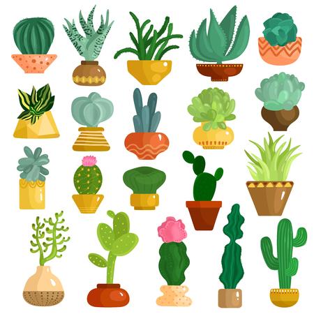 Cactus et plantes succulentes dans la collection d'icônes plat pots avec aloe agave kalanchoe opuntia euphorbia isolé illustration vectorielle Banque d'images - 94769789