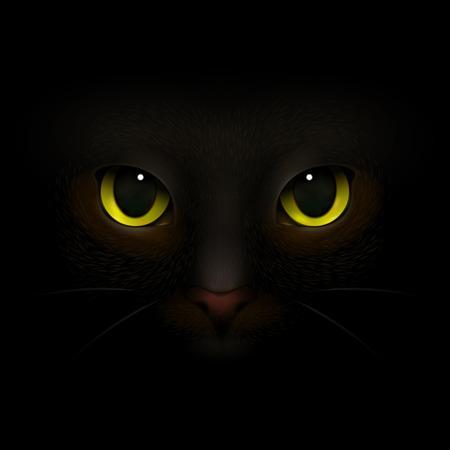 動物モンスターは、猫の目と鼻怖い猫の鼻が闇のベクトルイラストから外に出て現実的な組成物