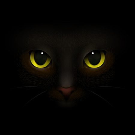 Animals monsters realistic composition with feline eyes and nose scary cats snout looking out of darkness vector illustration  イラスト・ベクター素材
