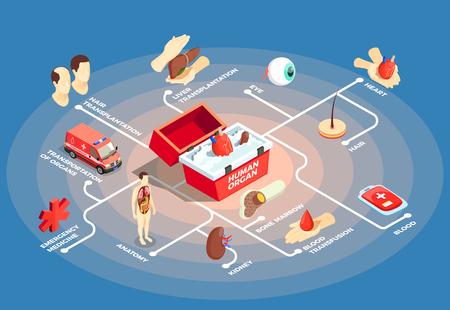 Transplantatie isometrisch stroomdiagram met donorhart in medisch geval voor menselijke organen anatomie dummy beenmerg lever oogpictogrammen vector illustratie Stock Illustratie