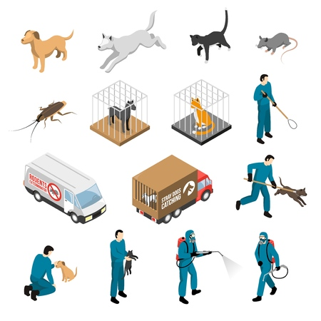 Animal control service, catching of stray dogs and cats, fighting with pests isometric set isolated vector illustration
