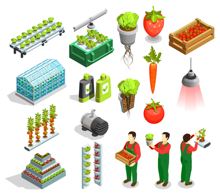 Hydroponic and aeroponic isometric icons set of fresh fruits and vegetables harvest orangery fertilizer symbols isolated vector illustration