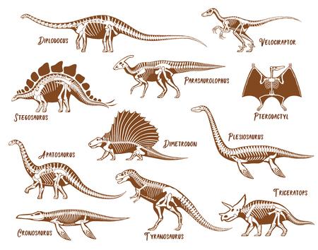 De decoratieve pictogrammen van dinosaurussen die met ter beschikking getrokken tekst van de beschrijvingstekst worden geplaatst isoleerden vectorillustratie Vector Illustratie
