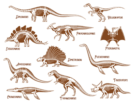 Dinosaurs decorative icons set with description text in hand drawn style isolated vector illustration Vettoriali