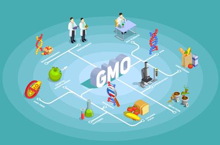 Diagrama de flujo isométrico de organismos genéticamente modificados sobre fondo turquesa con adn, investigación, alimentos orgánicos, ilustración de vector de productos gmo