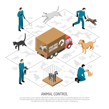 Animal control agency service isometric poster with officers catching and transporting dogs cats to shelters vector illustration