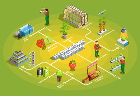 オレンジ構造のスタッフと要素を持つ水耕農業アイソメトリックフローチャート