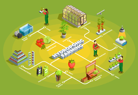 Hydroponic farming isometric flowchart with staff and elements of orangery constructions