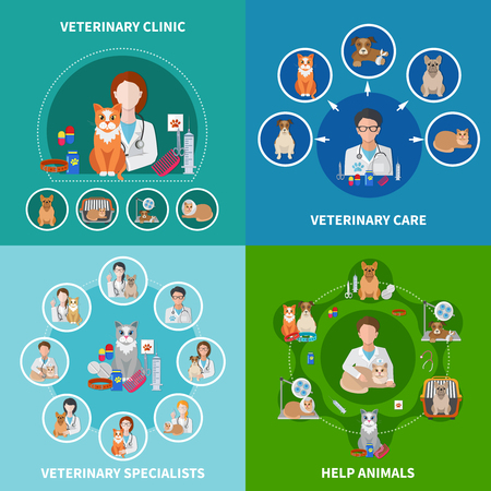 Veterinary clinic animal care treatments procedures medication specialists advise 4 flat icons square concept isolated vector illustration