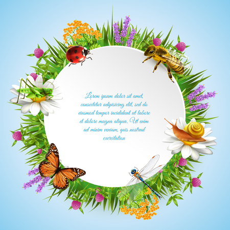 Insects in grass with wild flowers realistic round frame with ladybirds bee grasshopper and text vector illustration. Illusztráció