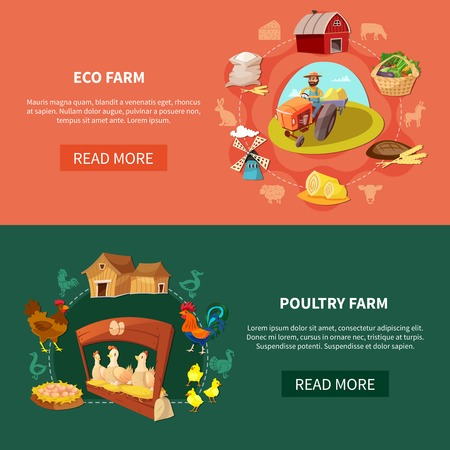 Two horizontal farm cartoon banner set with eco and poultry farm headlines vector illustration Illustration