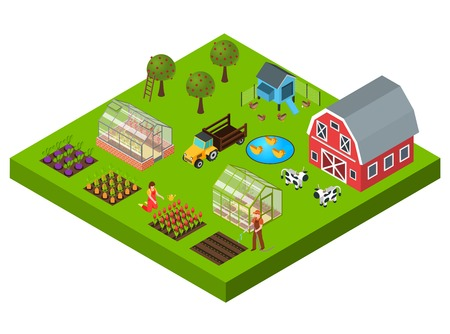 Isometric concept with big farm yard vegetable and flower beds cattle greenhouse barn 3d vector illustration. Illustration