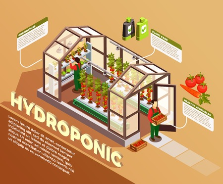 Hydroponic isometric composition with greenhouse image and description of construction elements and plant care methods vector illustration.