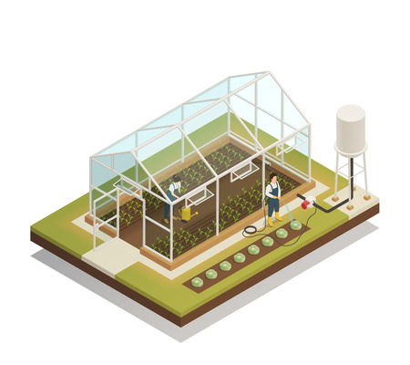 Greenhouse cable-supported irrigation facilities isometric composition with gardeners watering plants with hose and waterpot vector illustration Illustration