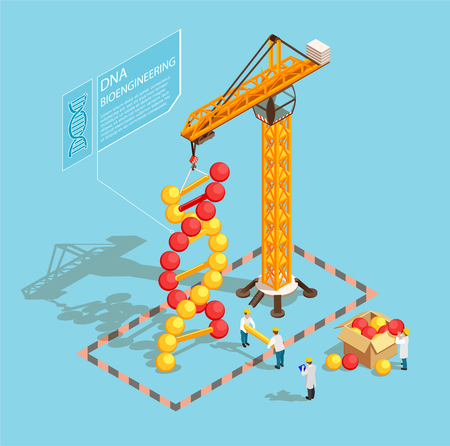 GMO bio engineering isometric composition on blue background with scientists during building of dna structure vector illustration