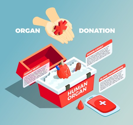 Organ donation isometric composition with donor kidney and donor heart in medical container and blood bad used for transfusion vector illustration Stock Illustratie