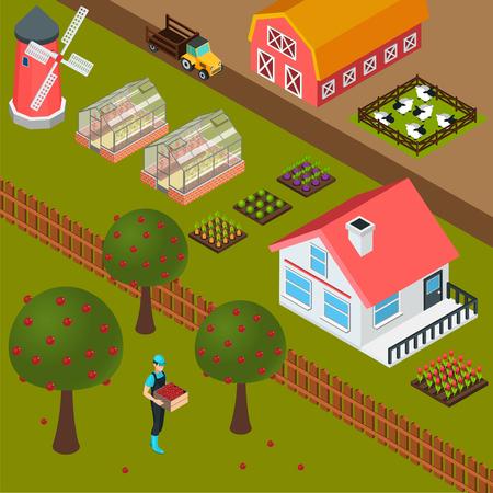 Isometrische Gutshausmühle Schafstall und Landwirt, die bunte Vektorillustration des Hintergrundes 3d der Äpfel erfasst