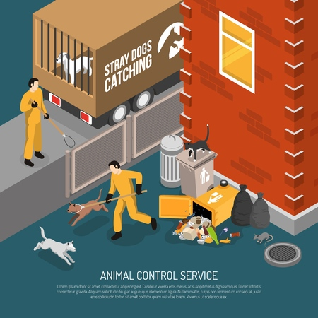 Animal control service catching stray abandoned and lost dogs eating from garbage cans isometric poster vector illustration