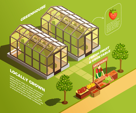 Isometric farm background with two glass greenhouses for locally growing organic vegetables and fruits vector illustration Illustration
