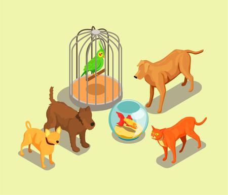 Pet shop isometric background vector illustration