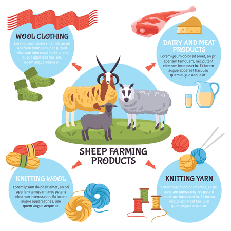 Sheep breeding farm products flat infographic poster with dairy and meat products wool yarn clothing vector illustration