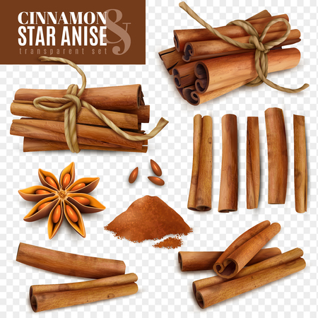 Set of cinnamon sticks with powder and star anise isolated on transparent background vector illustration