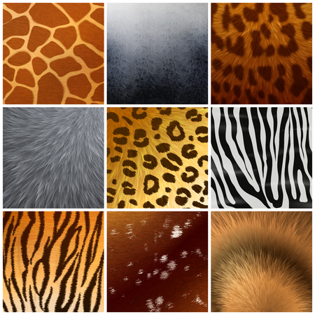 Real and faux exotic fur skin hide texture color pattern. 9 realistic samples collection, isolated vector illustration. Archivio Fotografico - 96844733