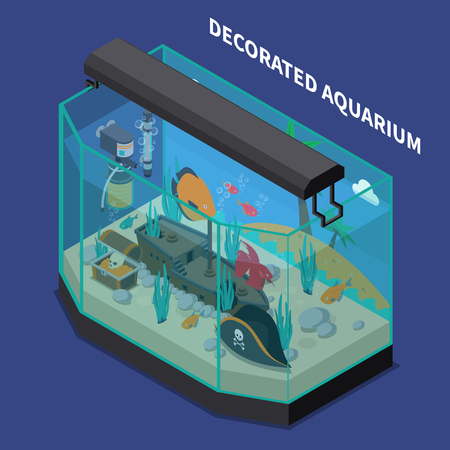 Decorated aquarium composition with equipment and accessories symbols on blue background isometric vector illustration