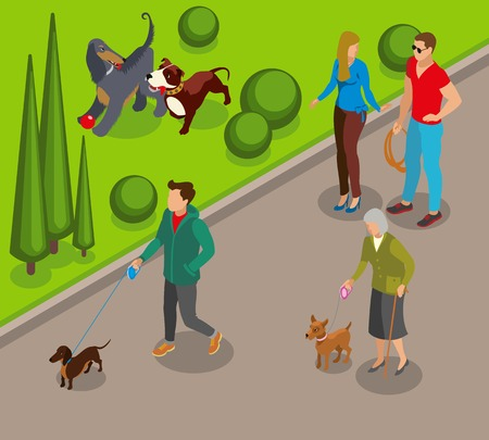 Dog walking in park, canine games on green lawn, community of pets owners isometric vector illustration