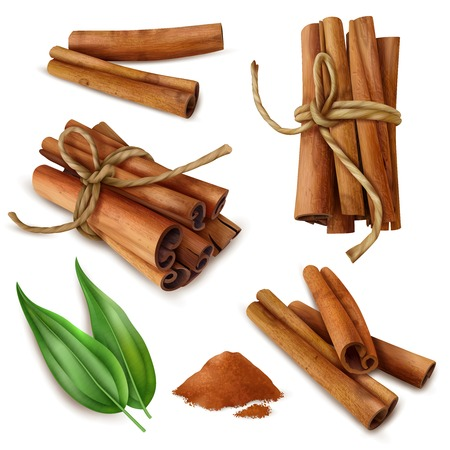 Set of realistic cinnamon sticks with spicy powder, green leaves isolated on white background vector illustration