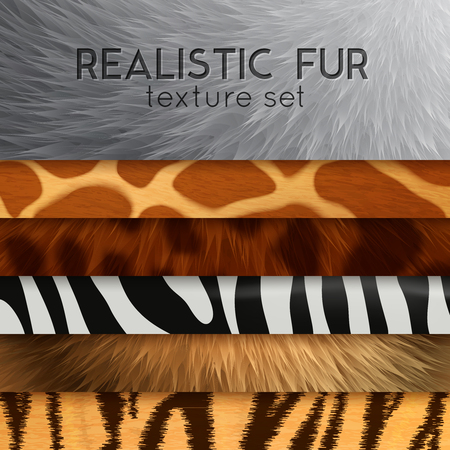 Collection of fur texture six horizontal elements with abstract various colored patterns in realistic style as background for design vector illustration