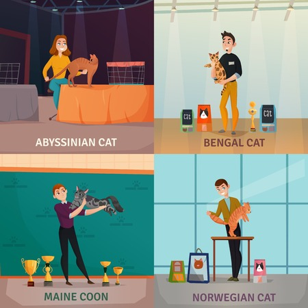 Cat show 4 cartoon icons concept with owners presenting bengal norwegian and abyssinian breeds isolated vector illustration