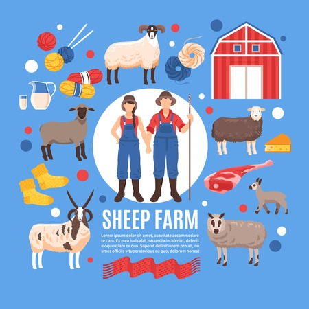 Sheep breeding lambing raising for wool meat dairy products traditional organic farm flat background poster vector illustration
