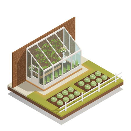Traditional lean-to glass greenhouse with young plants  isometric composition of greenery and outdoor gardening vector illustration