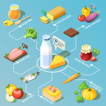 Organic food including, ecologically clean fruits and vegetables, dairy products isometric flowchart on turquoise background vector illustration