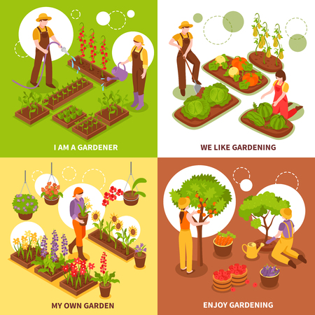 Gardening isometric concept icons set with vegetables and fruit symbols isolated vector illustration