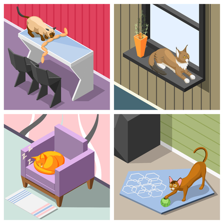 Purebred cats in home interior during sleep, rest, playing and eating isometric design concept isolated vector illustration