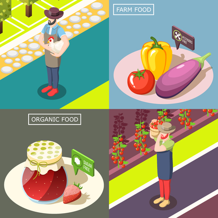 Organic food, vegetable harvest without pesticides, preserves from berries without sugar. Isometric design concept, isolated vector illustration. Illustration